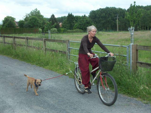 Faire du vélo avec son chien
