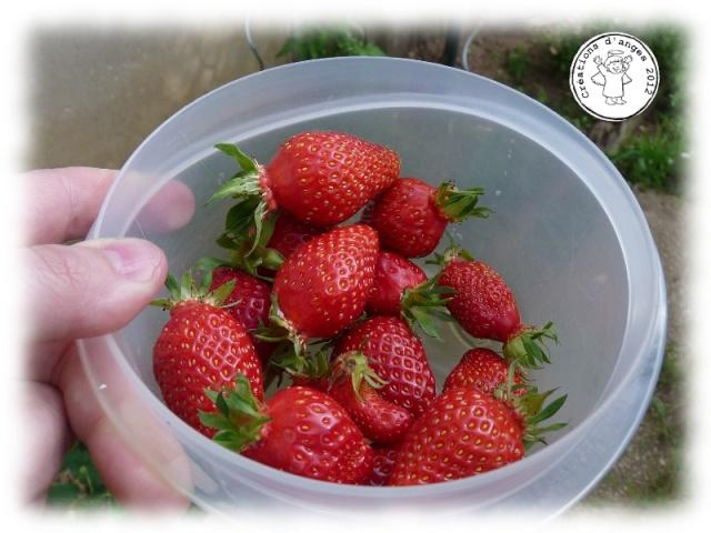 http://i45.servimg.com/u/f45/10/05/42/27/fraise11.jpg