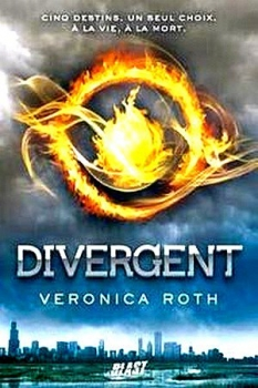 Divergent tome 1 veronica roth for Miroir divergent