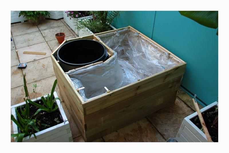 nature bassin la mare et le bassin de jardin naturel afficher le sujet r alisation de mon. Black Bedroom Furniture Sets. Home Design Ideas