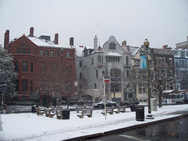 snow310.jpg