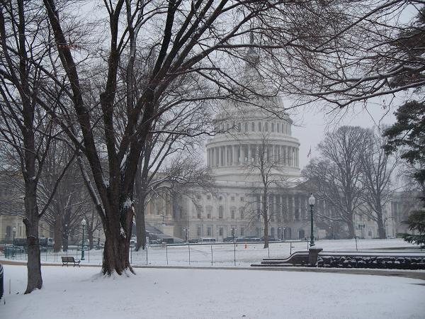 snow410.jpg
