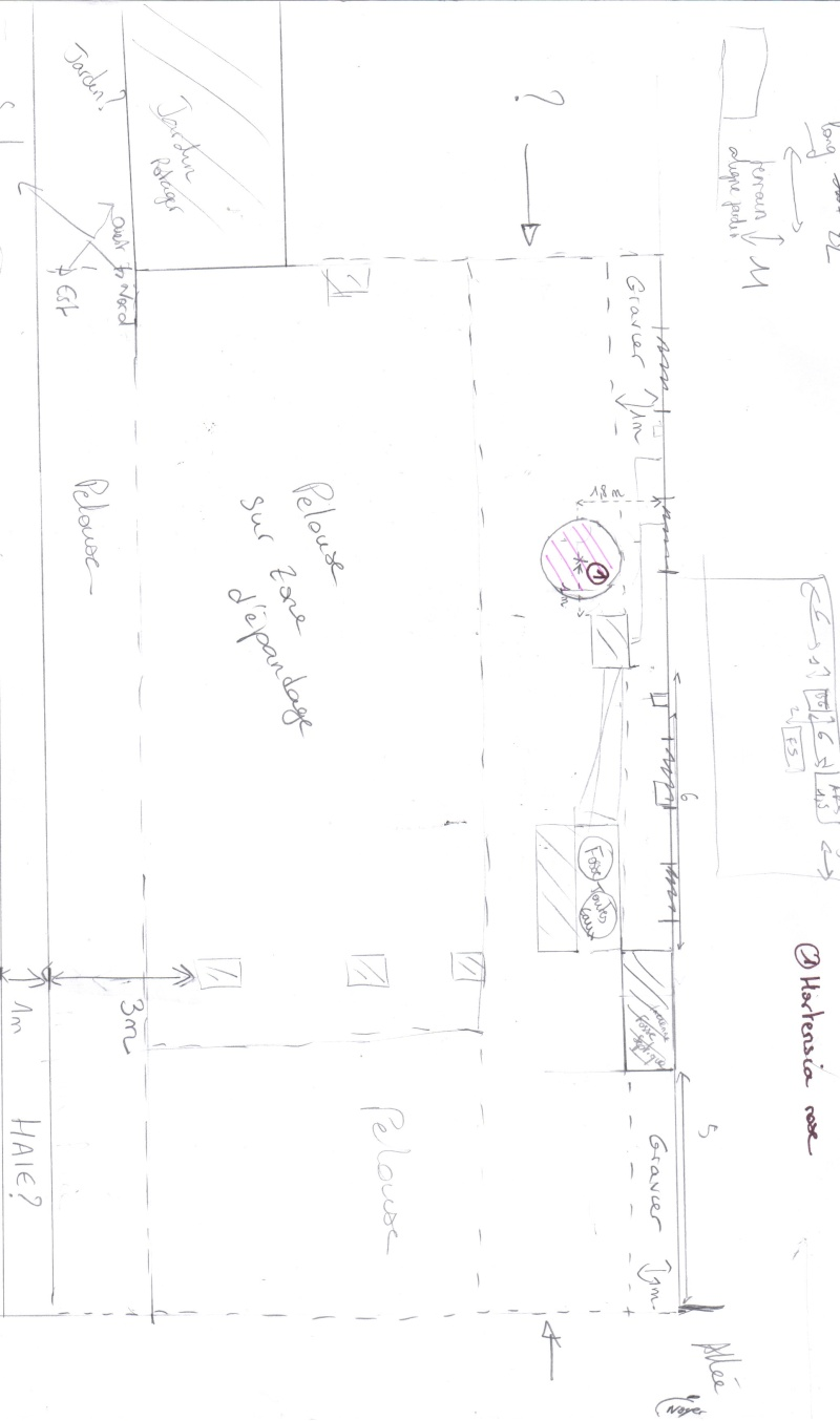am nagement d 39 un parterre pour cacher une fosse septique au jardin forum de jardinage. Black Bedroom Furniture Sets. Home Design Ideas