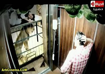 برنامج رامز قلب الاسد حماده هلال حلقة (7) تحميل ومشاهدة