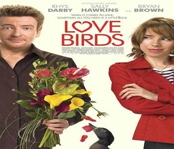 فيلم Love Birds 2011 مترجم جودة BRRip كوميدي رومانسي
