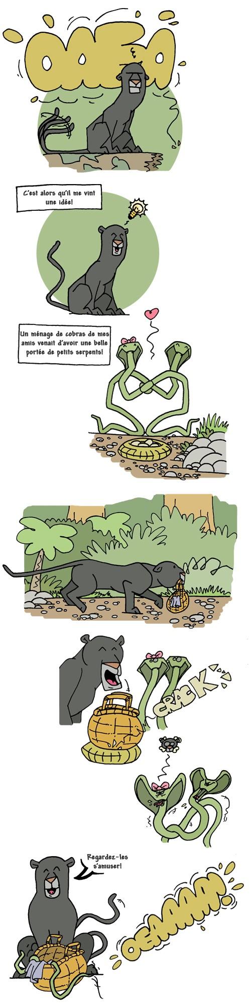 Le-livre-de-la-jungle7