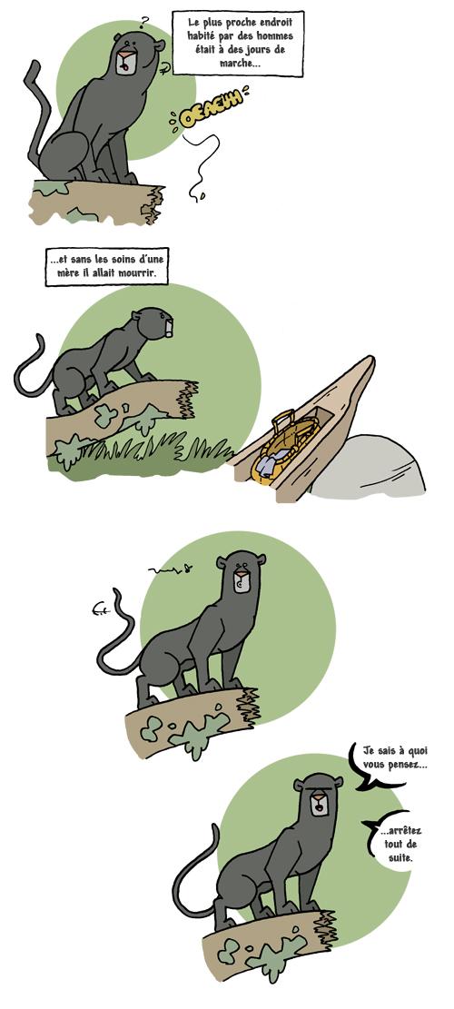 Le-livre-de-la-jungle6