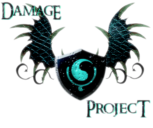 Damage Project