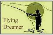 Flying dreamer