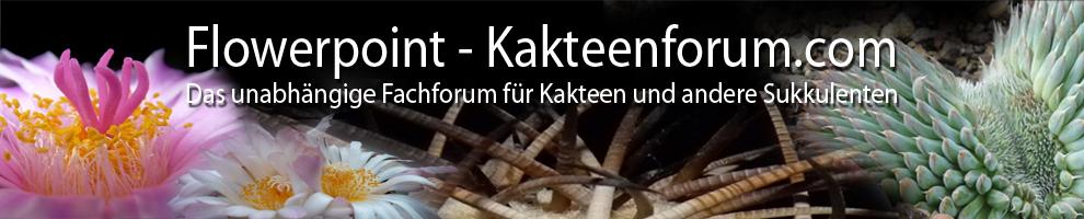 (c) Kakteenforum.com