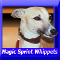 Magic Spring Whippet