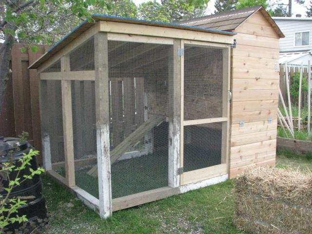 Poules ajout d 39 un vid o - Maison pour les poules ...