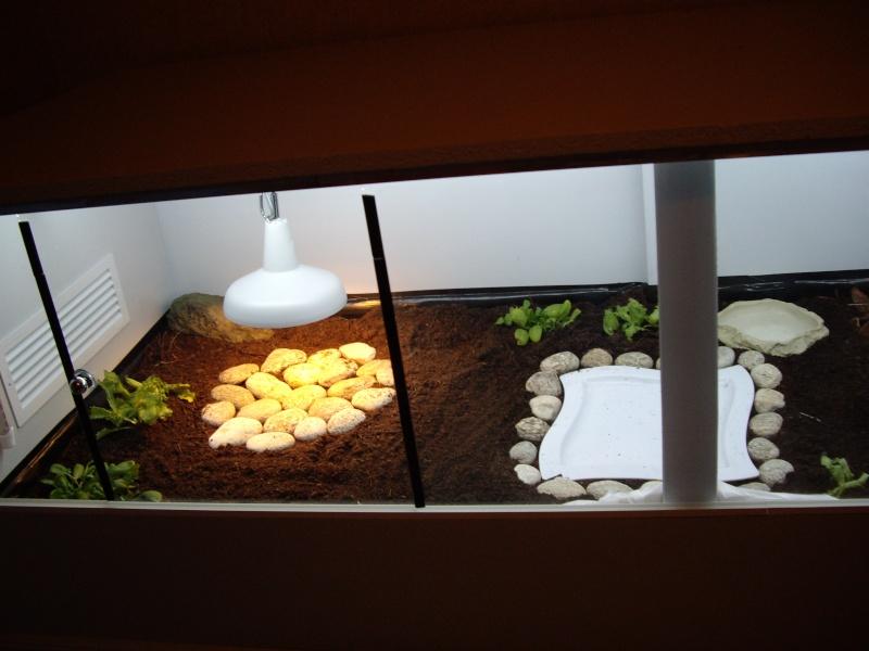 construction d 39 un tr s grand terrarium fait maison pour tortue. Black Bedroom Furniture Sets. Home Design Ideas