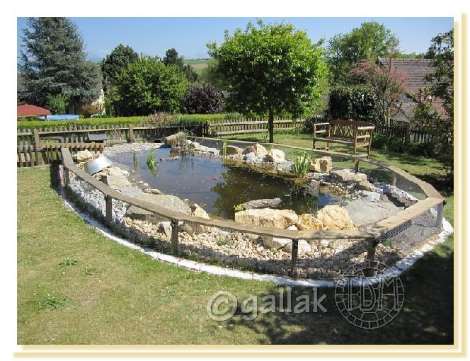 Exemples de bassins ext rieurs pour aquatiques for Modele bac a poisson