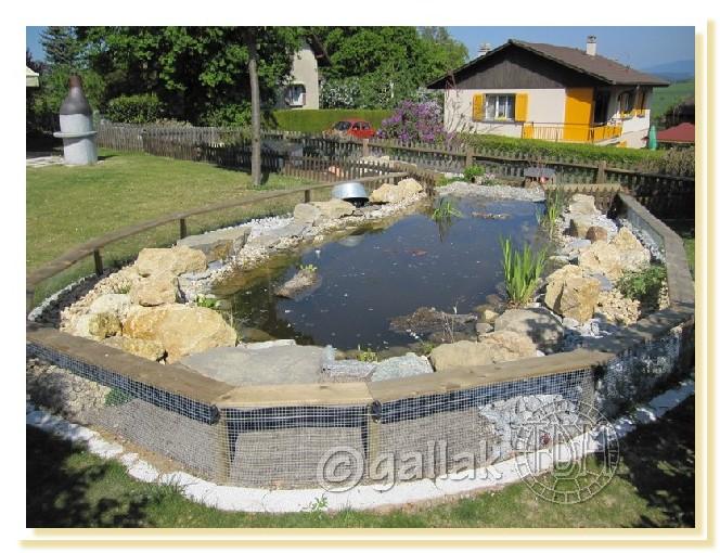 Exemples de bassins ext rieurs pour aquatiques for Plante bassin exterieur