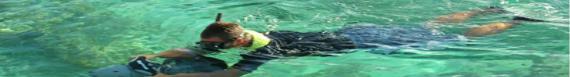 Plongée PMT, Snorkelling, randonnée aquatique