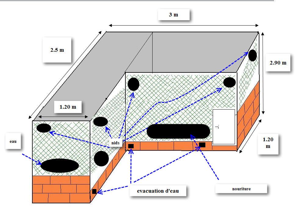 Levage exterieur ou interieur for Plan voliere exterieur