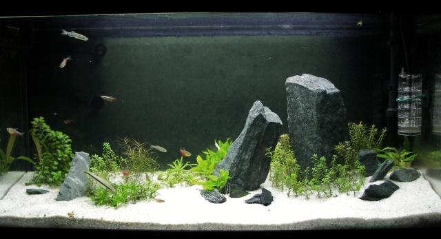 how to raise kh in aquarium