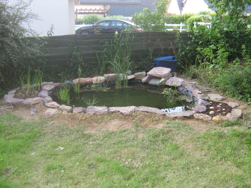 Kej 39 s bassin - Plantes filtrantes bassin rennes ...