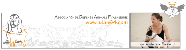 Adap64 - Association de Défense Animale Pyrénéenne