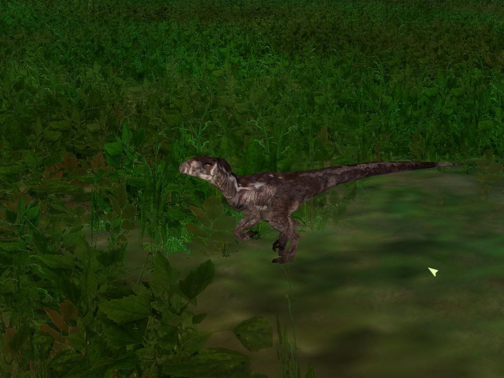 Old Raptor Skin