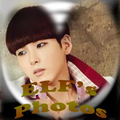 E.L.F's photos