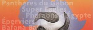Monsieur Dico. dans FABLE conc-d10