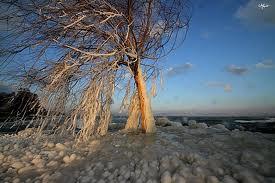Premier vent d'hiver dans LES 4 SAISONS images87
