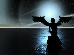 Comme un oiseau de nuit dans MOMENT DE VIE oiseau10