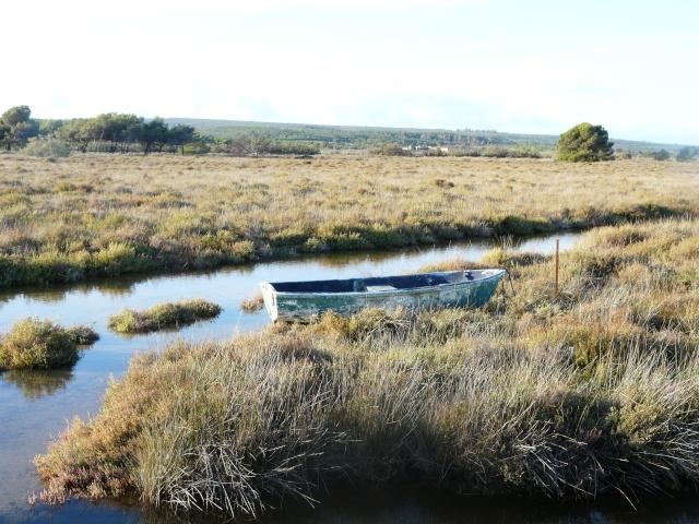 Une barque sur l'étang dans GRUISSAN p1210410