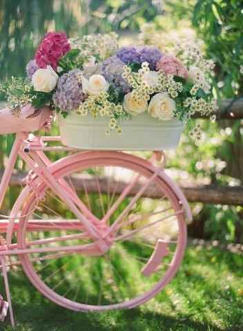 Le vélo rose dans MOMENT DE VIE route_11