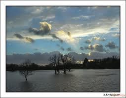 Terre mouillée dans LES 4 SAISONS terre_10