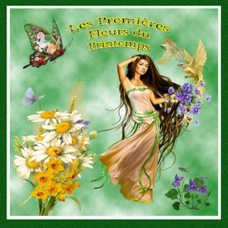 Les premières fleurs du printemps dans LES 4 SAISONS untitl16