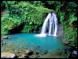 Bassin Tropical