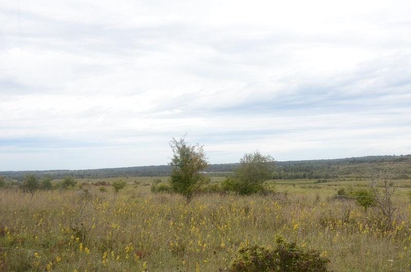 Sites Et Vestiges   Les Villages Disparus Du Camp De