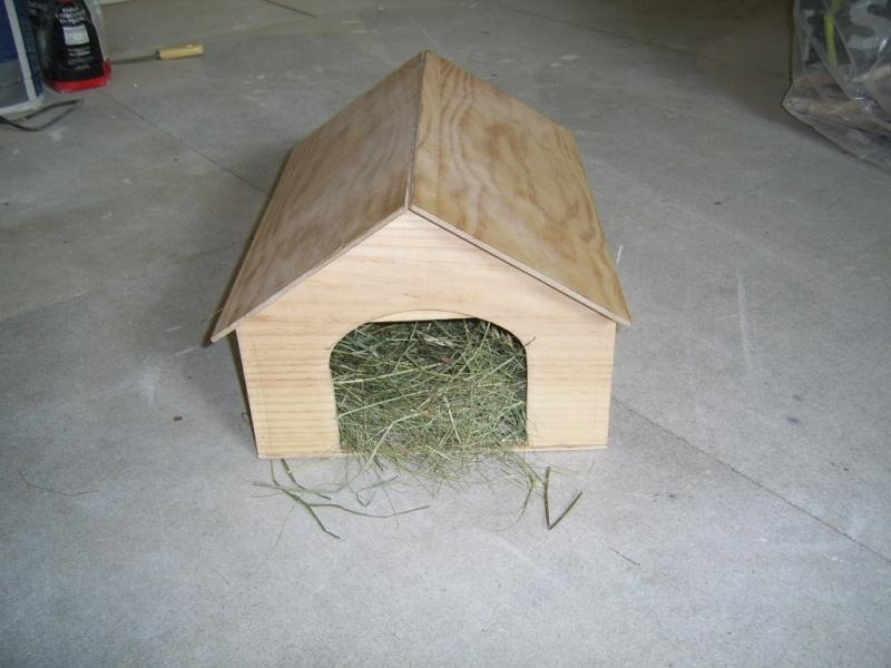 conseil pour tortue graeca. Black Bedroom Furniture Sets. Home Design Ideas