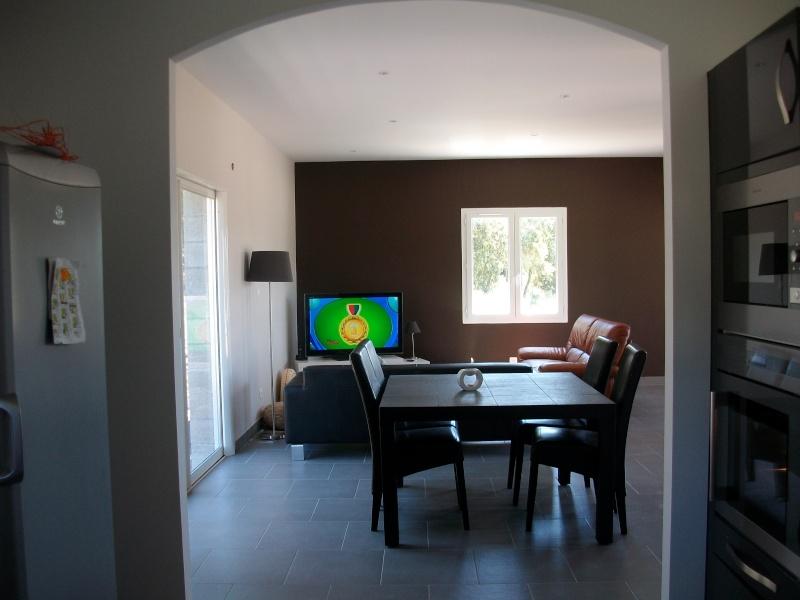 Dilemne besoin de vos conseil svp panneau japonnais ou rideaux pour mon salon for Quel couleur pour mon salon