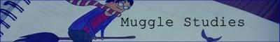 Muggle Studies