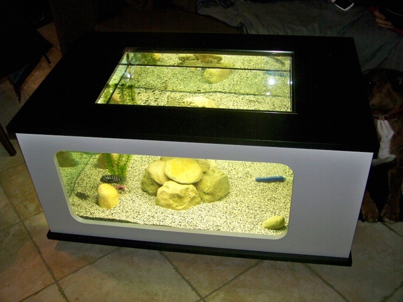 Ma table basse aquatlantis 310l for Table salon aquarium
