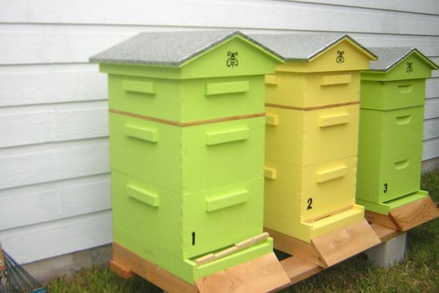 d coration de ruches. Black Bedroom Furniture Sets. Home Design Ideas