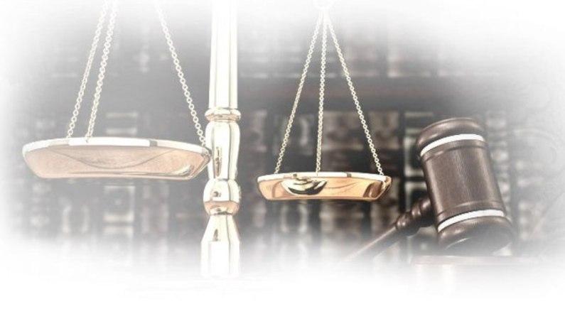 حسين فريد المحامى
