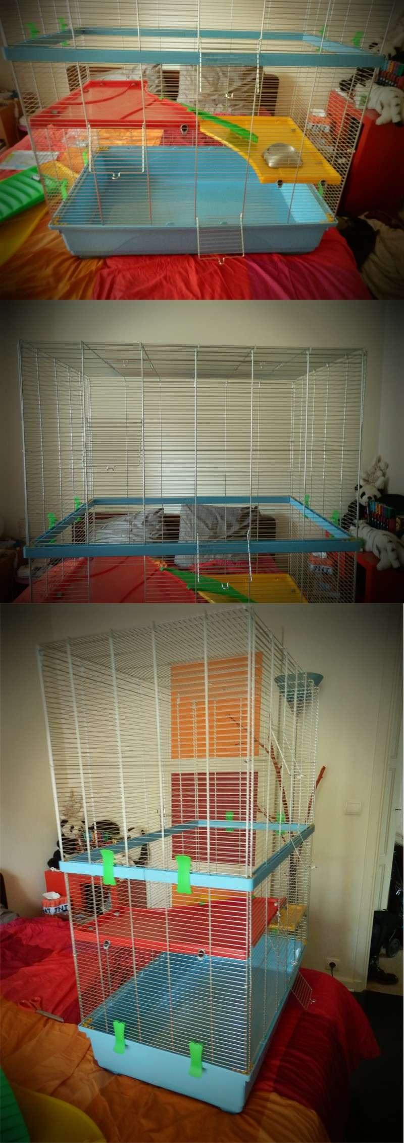 cage_c10.jpg