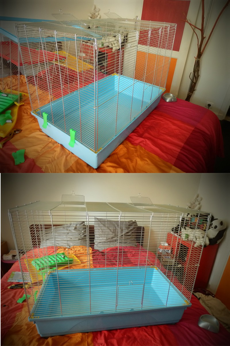 cage_m10.jpg