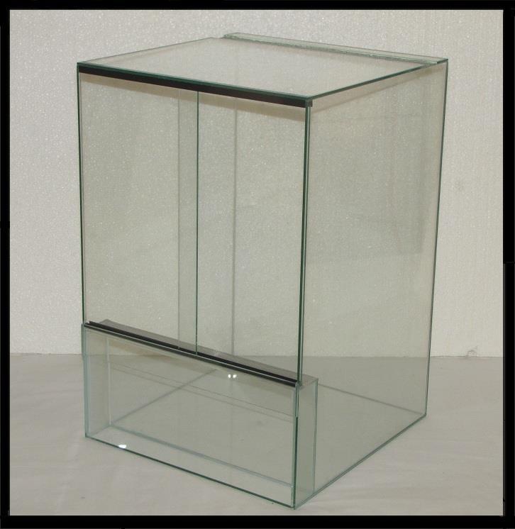 forum tanalahy terrarium en verre sp cial d butants. Black Bedroom Furniture Sets. Home Design Ideas
