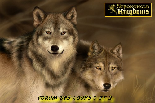 Les Loups Maison 9 et 10 Unifiées