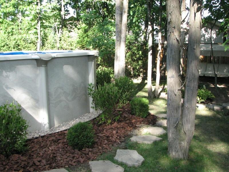 quelle plante autour d une piscine quelle plante autour d une piscine quelle plante autour d. Black Bedroom Furniture Sets. Home Design Ideas