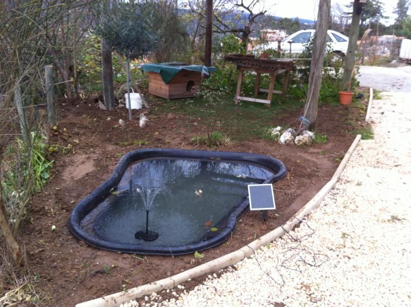 Cr ation bassin 1000 litres en image for Bassin 1000 litres
