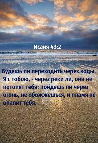bf08b410.jpg